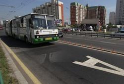 выделенные полосы в Москве