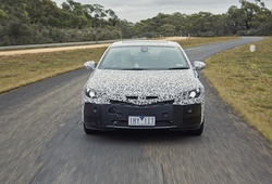 Holden Commodore