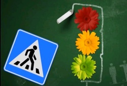ГИБДД выпустила интернет-урок по ПДД для школьников